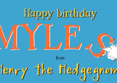 Children's books   Henry the Hedgegnome   Happy birthday - Myles