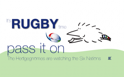 The Hedgegnomes are ready for The Six Nations rugby