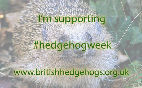I'm supporting #HedgehogWeek
